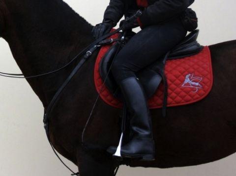 Вышитый вальтрап на лошади